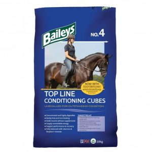 Baileys No.4 Top Line Condition Cubes 20kg  *** £ 13.99 *** COLLECT IN PERSON FOR THIS SPECIAL ONLINE DEAL  !!!