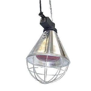 Infrared Heat Lamp ***£19.99*** COLLECT IN PERSON FOR THIS SPECIAL ONLINE DEAL !!!