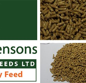 S.A.F Turkey Rearer Pellets 25kg ***£9.99*** COLLECT IN PERSON FOR THIS SPECIAL ONLINE DEAL  !!!